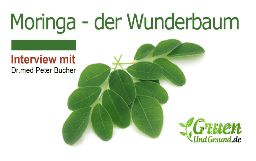 Moringa – das grüne Superfood. Interview mit Dr. med Peter Bucher